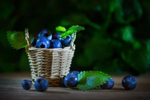 Berry Basket 02 by NellyGrace3103