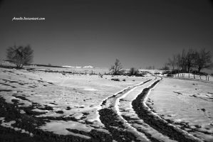 Snowy Road by Aneede
