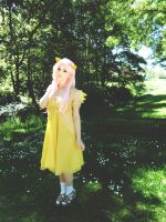 Cosplay: Fluttershy by Angels-Leaf