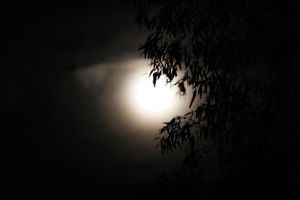 Canberra At Night - Moon by ArtByTash