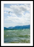 Wind Surfer by NaujTheDragonfly