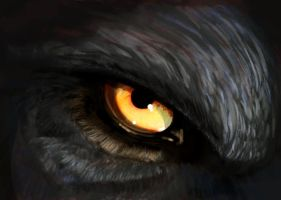 Wolfie eye by Clairictures