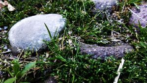 Stones and grass by MeGustaDeviantart