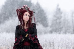 It is to cold out here ...  Lady Butterfly by S-T-A-R-gazer