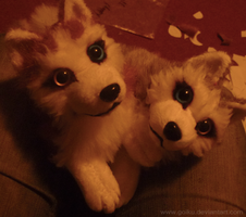 Red and Grey Siberian Huskies - Preview by goiku