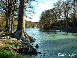 Guadalupe River Shadows by emwtaylor