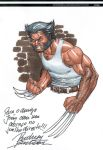 Wolverine sketch by Buchemi