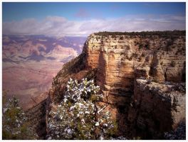 Grand Canyon by mayel411