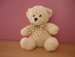 Teddy - Toy Stock 2 by shelldevil