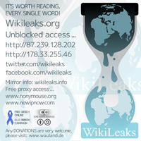 wikileaks.org by palmouth