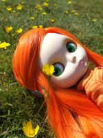 Clementine Dandelion by wedgielou