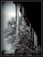 Icicles 3 by roxyms