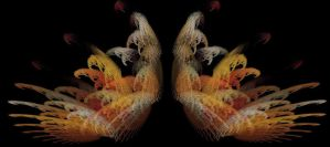 Wings of a Fowl by tmiller104