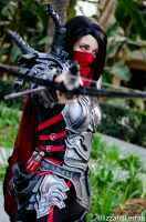 WC14 - Demon Hunter by BlizzardTerrak