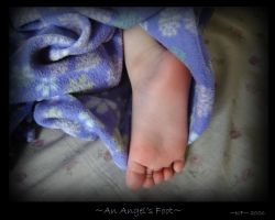 An Angel's Foot by annora