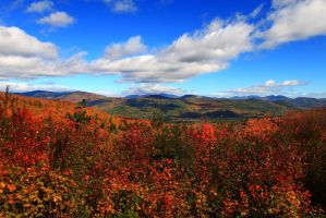 New Hampshire Autumn by Celem