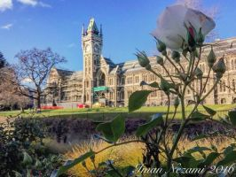The beautiful clock tower by thesonofsalvation