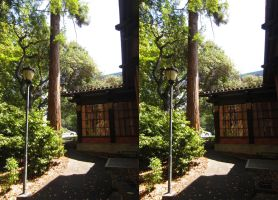 Stereograph - Berkeley Lamppost by alanbecker