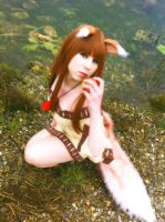 Holo Spice and Wolf - My Apple and Me by K-I-M-I