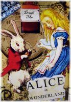 Alice in Wonderland + close up by Bohemiart