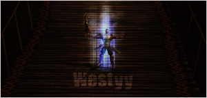 Metin2 it's Westyy by th3xPiw0r