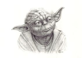 Little old Yoda by ktalbot