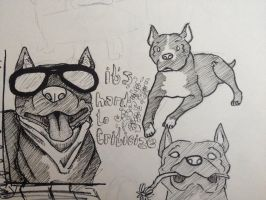 Pitbulls by your-friendly-nukes