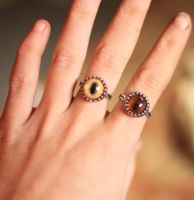 New Taxidermy Glass Eye Rings by NaturePunk