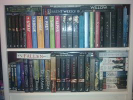 Bookcase - Rearranged by Shadows-r-Light