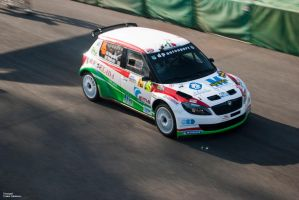 Fabia at Monza Rally Show 2011 by Estranged89