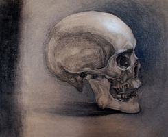 The skull II by Oddel