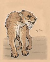 Sabertooth by TWKeller