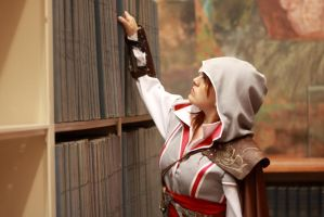 Assassins Creed 2 by AlexielDeath10
