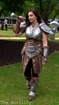 Skyrim Steel Armour by TheAnti-Lily