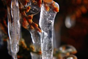 Icicle Close-Up by LorreesWorld