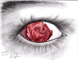 rose eye by raul-duke-05