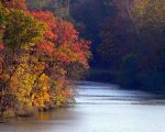 Autumn on the Lake by dmguthery