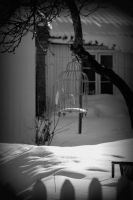 Emty birdcage by Annefre