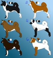 Canaan Dog Adoptables ONE LEFT by ZephyrAnemos