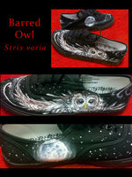 Barred Owl Shoes by Sachiaoitori
