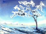 Frozen Tree by doma22