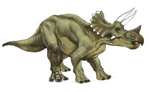 Triceratops by pietro-ant