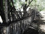 The Log Fence by SharPhotography