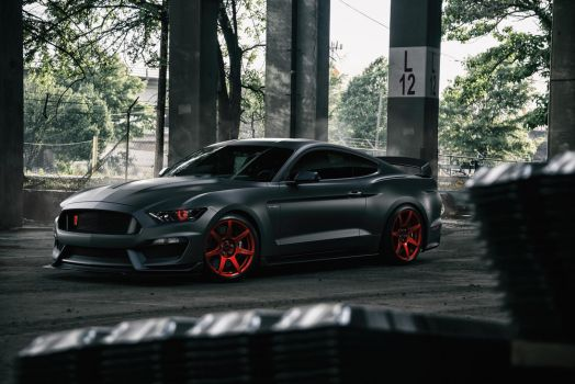Ford Mustang Shelby GT350R by RedStarCG