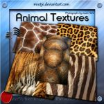 High Reslolution Animal Textures by M10tje