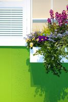 window box by bewing