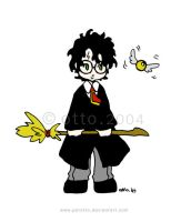 HP . Harry Potter by porotto