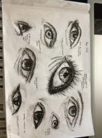 Eye Study by DaggarHeart