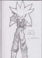 Future Silver the Hedgehog by Sotamies007