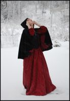 My Winterstorm III by Eirian-stock
